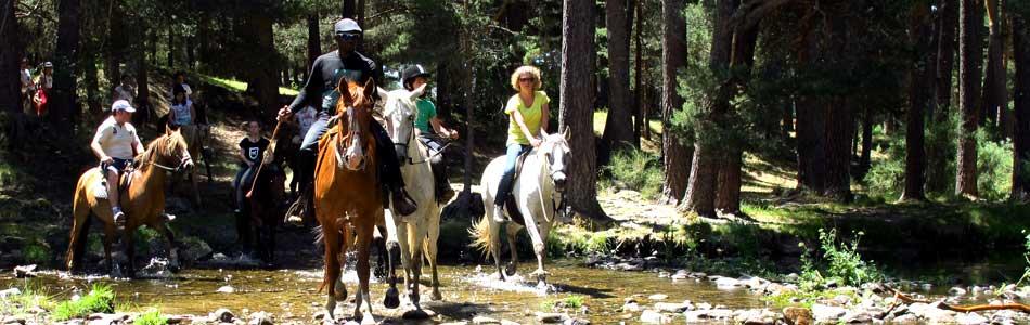 Rutas a caballo, senderismo, bicicleta, parque de aventuras y actividades en el propio camping te esperan en El Camping de Gredos
