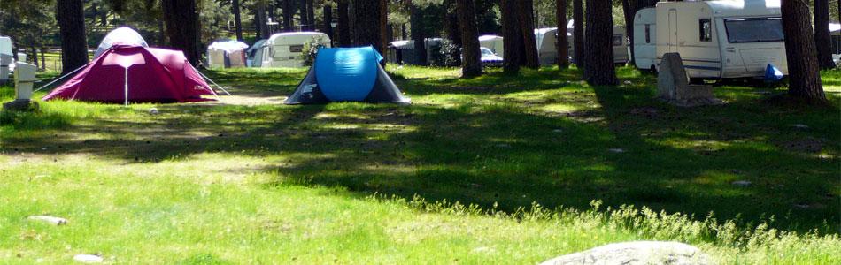 En un magnífico pinar, a las orillas del río Tormes, se encuentra El Camping de Gredos